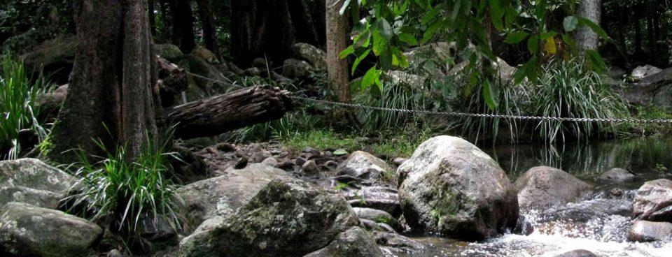Paluma Range